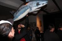 Der Plastik-Hai fliegt oft